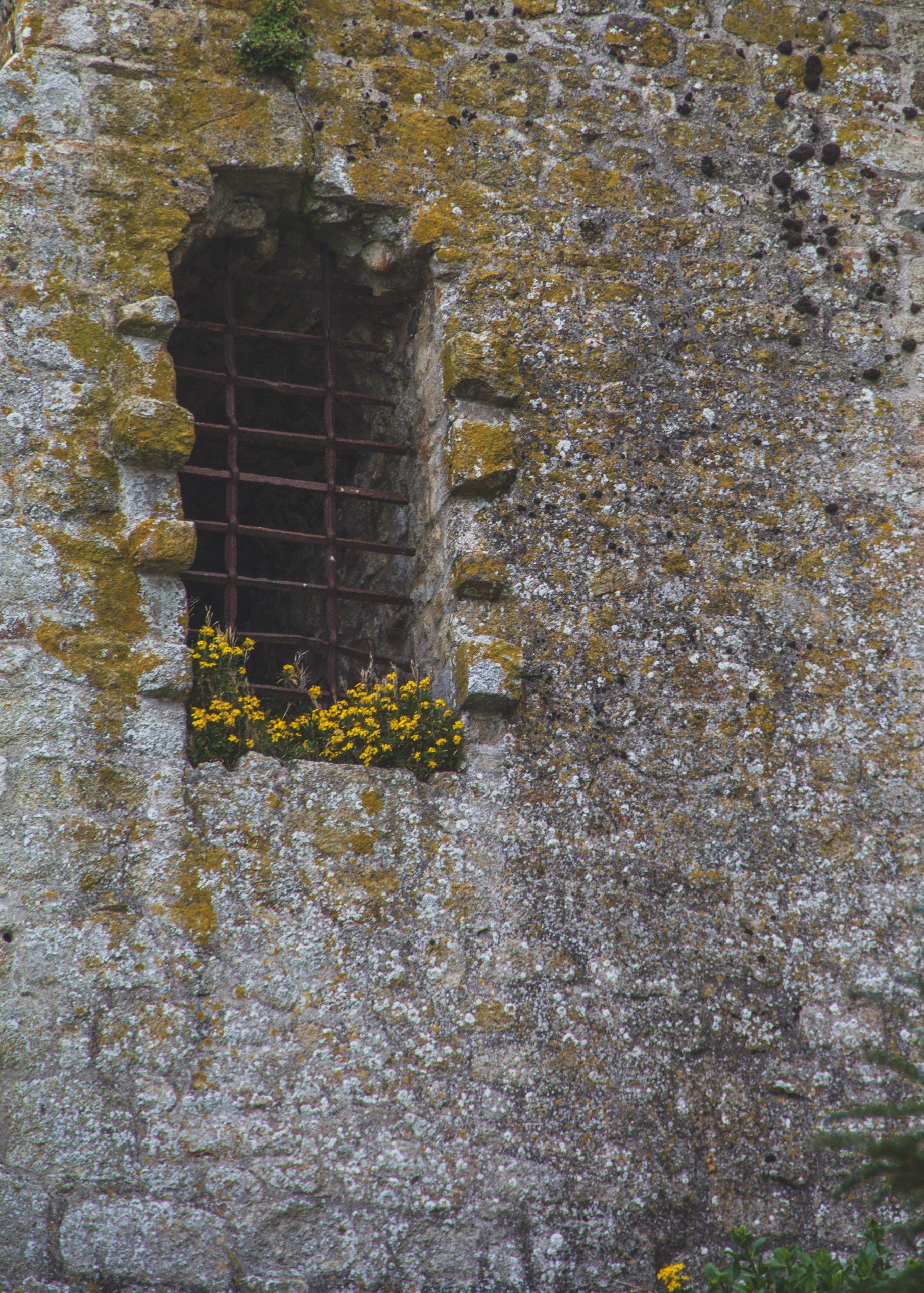Medieval window.